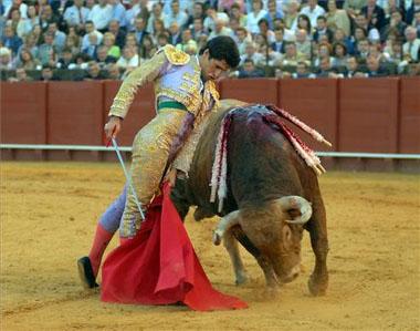 20100306000633-corrida.jpg