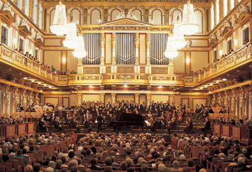 20101231230717-conciertoviena.jpg
